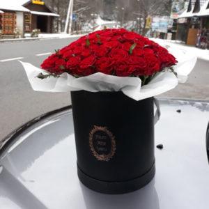 101 роза купить в Буковеле