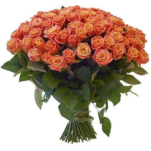 """букет 101 роза """"Мисс Пигги"""""""